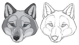 Wolf Head Image libre de droits