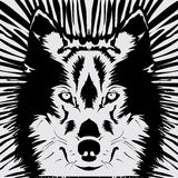 Wolf Head Photographie stock libre de droits