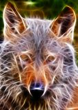 Wolf head Stock Photography