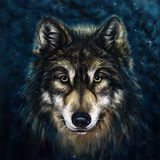 Wolf Head royaltyfri illustrationer