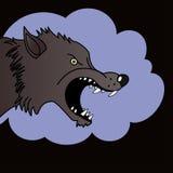 Wolf Head - ejemplo Fotos de archivo