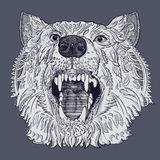 Wolf head. Hand-drawn wolf head. Vector illustration Royalty Free Stock Photo