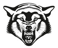 Wolf Head Illustration Image libre de droits