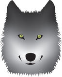 Wolf head illustration Royalty Free Stock Photography