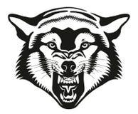 Wolf Head Ilustración Imagen de archivo libre de regalías