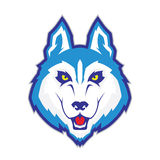 Wolf head mascot. Clipart picture of a wolf head cartoon mascot character Royalty Free Stock Image