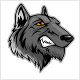 Wolf head mascot isolated on white. Stock Photo