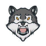 Wolf head mascot Stock Photos