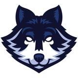 Wolf head mascot Stock Image