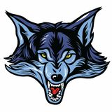 Wolf Head Mascot. Vector of Wolf Head Mascot Royalty Free Stock Images