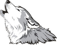 Wolf head vector Stock Images