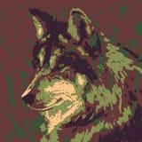 Wolf head Royalty Free Stock Photos