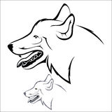 Wolf head. Vector illustration : Wolf head on a white background Stock Image