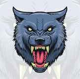 Wolf Head Royalty Free Stock Image