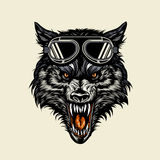 Wolf head wearing a goggle Royalty Free Stock Images