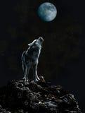 Wolf heult am Mond auf einer dunklen Nacht Stockfotografie
