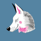 Wolf hipster Royalty Free Stock Photo