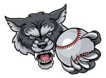 Wolf Holding Baseball Ball Mascot Illustration Libre de Droits