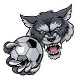 Wolf Holding Soccer Football Ball maskot Royaltyfri Fotografi