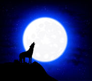 Wolf Howling at the full moon. Student hat on a sky background, vector art illustration Royalty Free Stock Photography