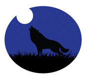 Wolf howling moon Stock Images