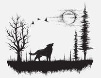 Wolf howling at the moon. In the forest. Hand drawn vector illustration royalty free illustration