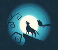 Wolf Howling in the Moonlight Stock Photos