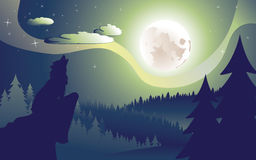 Wolf Howling in the Night Forest Stock Photos