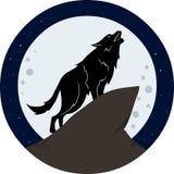 Wolf Howling To The Moon på natten Royaltyfria Bilder