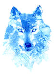 Wolf. image of a wild animal. Watercolor hand drawn illustration Stock Photos