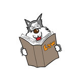 Wolf liest Gesetzbuch Stockfotografie