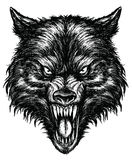 Wolf Linework Vector tiré par la main Photos stock