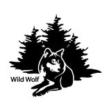 Wolf Logo Immagine Stock