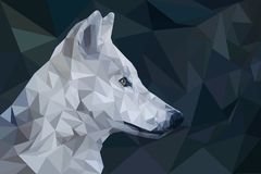 Wolf Low Polyganal imagem de stock