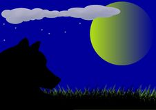 Wolf and Luna. Wolf in the field and Luna on nightly sky.Abstract landscape.Vectorial illustration royalty free illustration