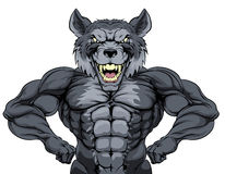 Wolf Mascot Royalty Free Stock Image
