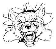 Wolf mascot breakthrough Royalty Free Stock Images
