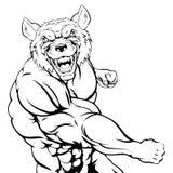 Wolf Mascot de combate Imagens de Stock Royalty Free