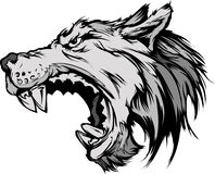 Wolf Mascot Head Cartoon Wolf Mascot Head Cartoon Stock Photo