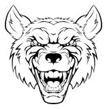 Wolf mascot head. An illustration of a tough looking wolf animal sports mascot or character Stock Photos