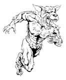 Wolf mascot Stock Image