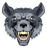 Wolf Mascot malo Fotos de archivo