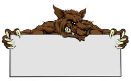 Wolf Mascot Sign. Wolf sports animal mascot holding a sign Stock Photo
