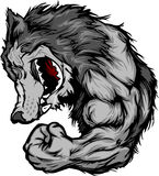 Wolf-Maskottchen, das Arm-Karikatur biegt Lizenzfreies Stockbild
