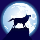 Wolf-on-moon Stock Image
