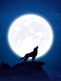 Wolf and Moon Royalty Free Stock Photos