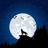 Wolf and moon Stock Images