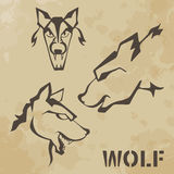 Wolf. Old paper vintage (texture royalty free illustration