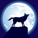 Wolf-op-maan Stock Afbeelding