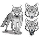 Wolf, op witte achtergrond, kleurenillustratie wordt geïsoleerd, geschikt als embleem of teammascotte, gevaarlijk bosroofdier, wo stock illustratie